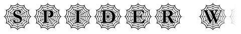 Spider Web Mono