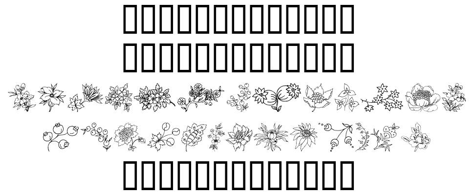 Traditional Floral Design 字形