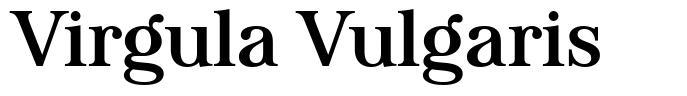 Virgula Vulgaris font