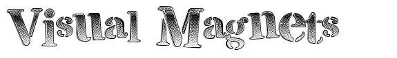 Visual Magnets font