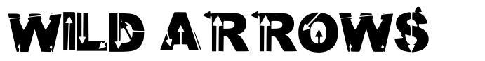 Wild Arrows font