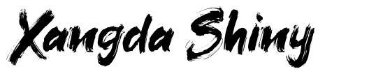 Xangda Shiny font