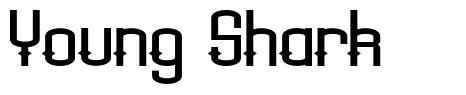 Young Shark font
